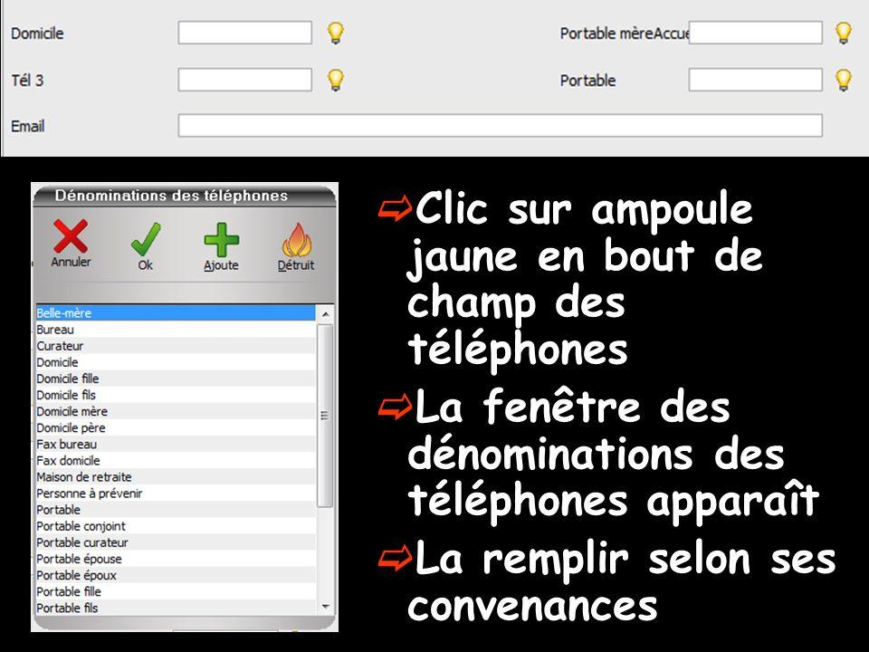 Clic sur ampoule jaune en bout de champ des téléphones La fenêtre des dénominations des téléphones apparaît La remplir selon ses convenances