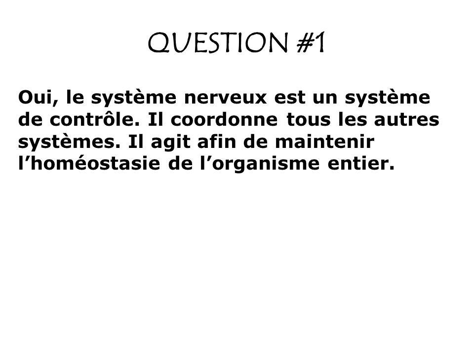 QUESTION #2 La sensibilité : Information sensorielle provenant des récepteurs qui réagissent à des stimuli externes et internes.
