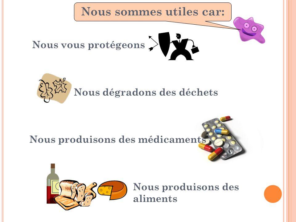 Nous vous protégeons Nous dégradons des déchets Nous produisons des médicaments Nous produisons des aliments Nous sommes utiles, car : Nous sommes uti
