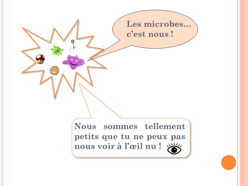 Nous sommes tellement petits que tu ne peux pas nous voir à lœil nu ! Les microbes… cest nous !