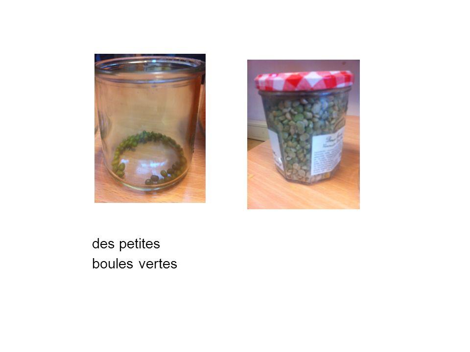 La boite NON Mais dans la boite NON des objets ont aussi germé et des plantes ont poussé !!!!
