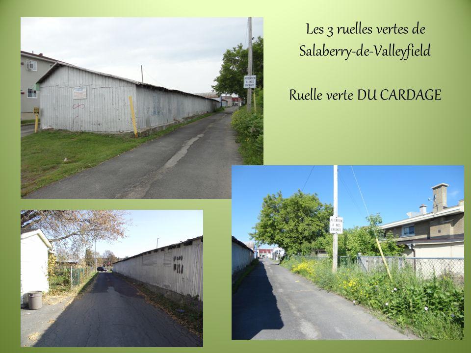 Les 3 ruelles vertes de Salaberry-de-Valleyfield Ruelle verte DU CARDAGE