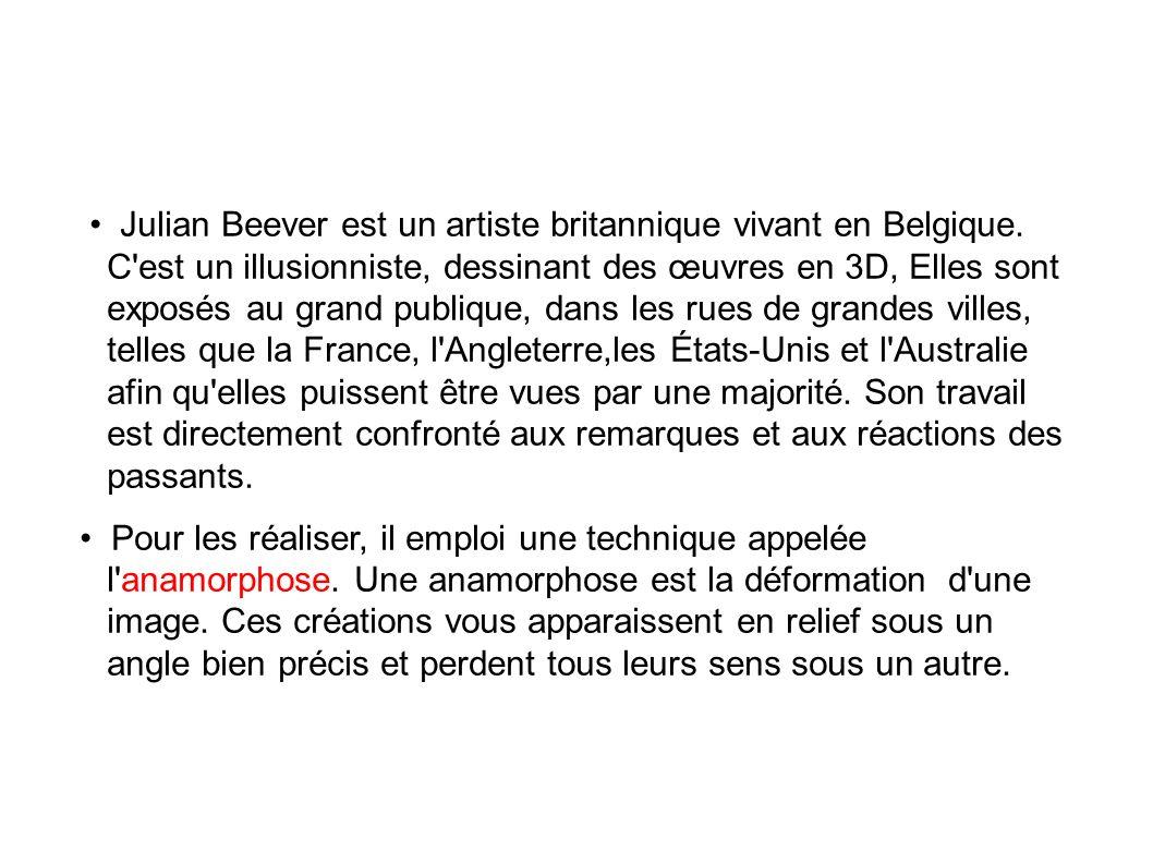 Julian Beever est un artiste britannique vivant en Belgique. C'est un illusionniste, dessinant des œuvres en 3D, Elles sont exposés au grand publique,