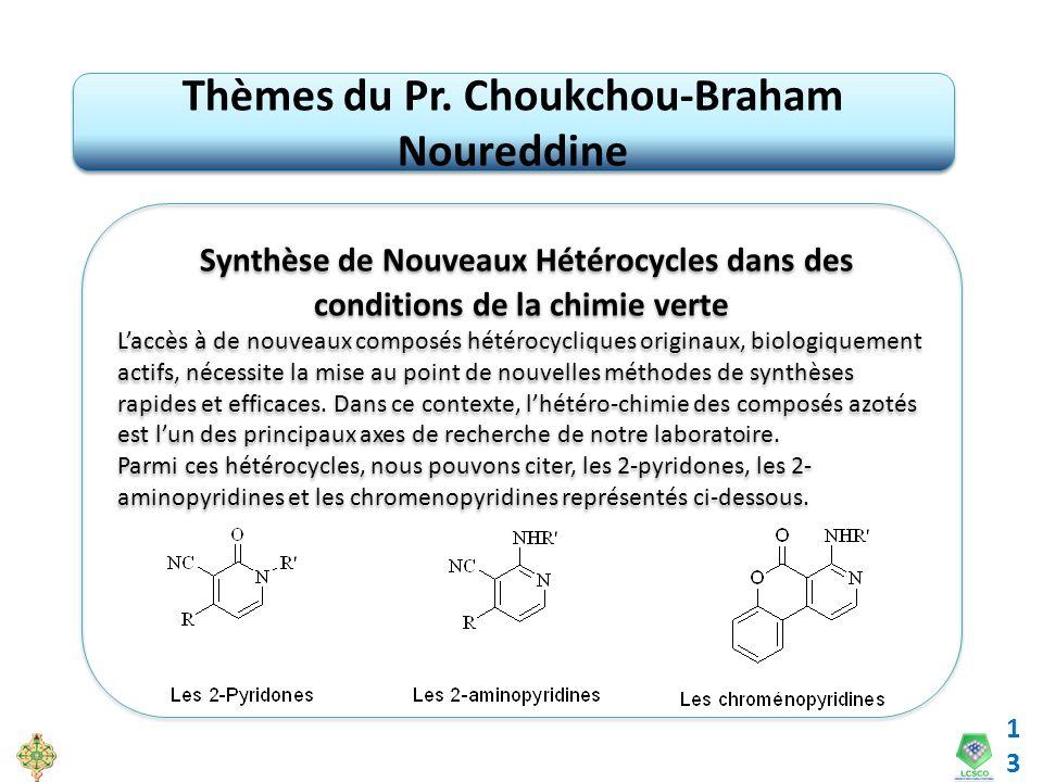 13 Thèmes du Pr. Choukchou-Braham Noureddine Synthèse de Nouveaux Hétérocycles dans des conditions de la chimie verte Laccès à de nouveaux composés hé