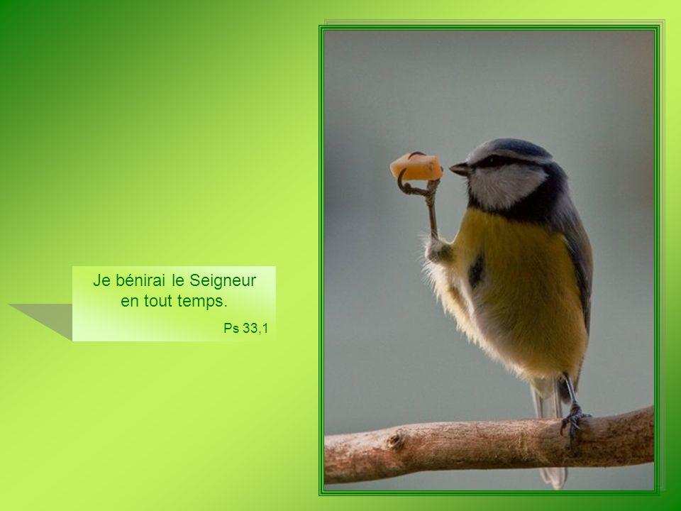 Heureux qui pense au faible et au pauvre : le Seigneur le sauve au jour de malheur ! Ps 40,2