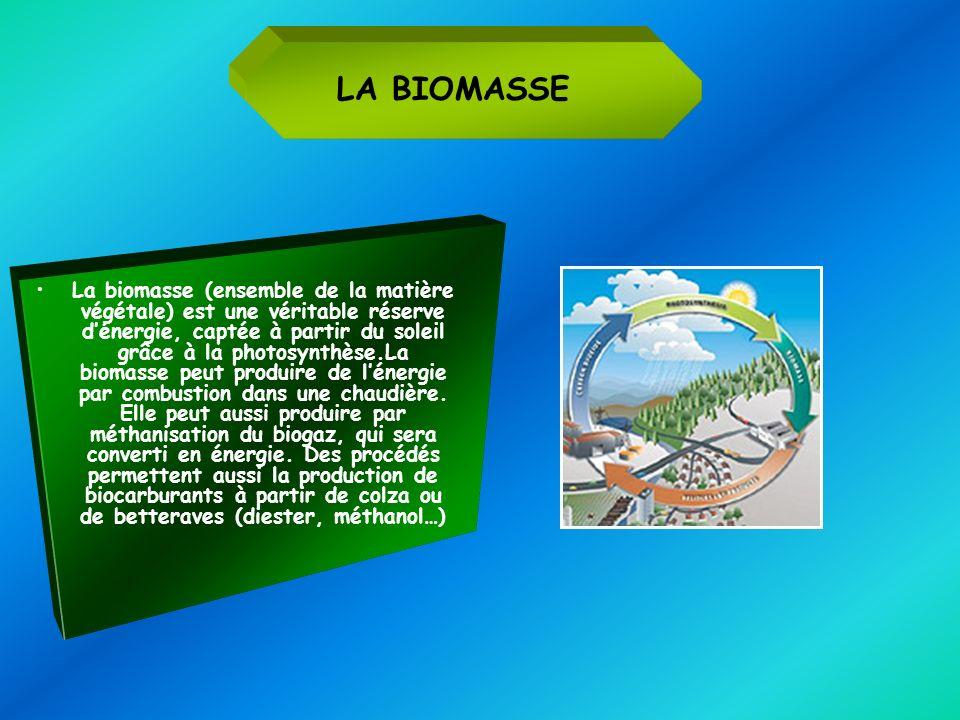 La biomasse (ensemble de la matière végétale) est une véritable réserve dénergie, captée à partir du soleil grâce à la photosynthèse.La biomasse peut