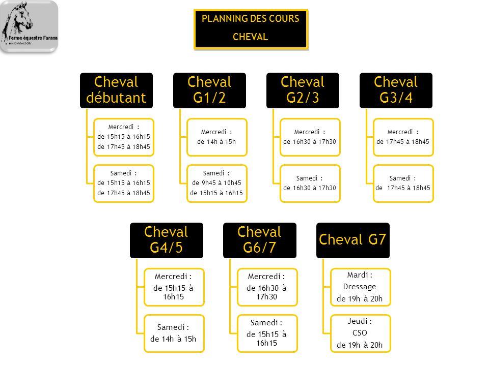 PLANNING DES COURS CHEVAL PLANNING DES COURS CHEVAL Cheval débutant Mercredi : de 15h15 à 16h15 de 17h45 à 18h45 Samedi : de 15h15 à 16h15 de 17h45 à