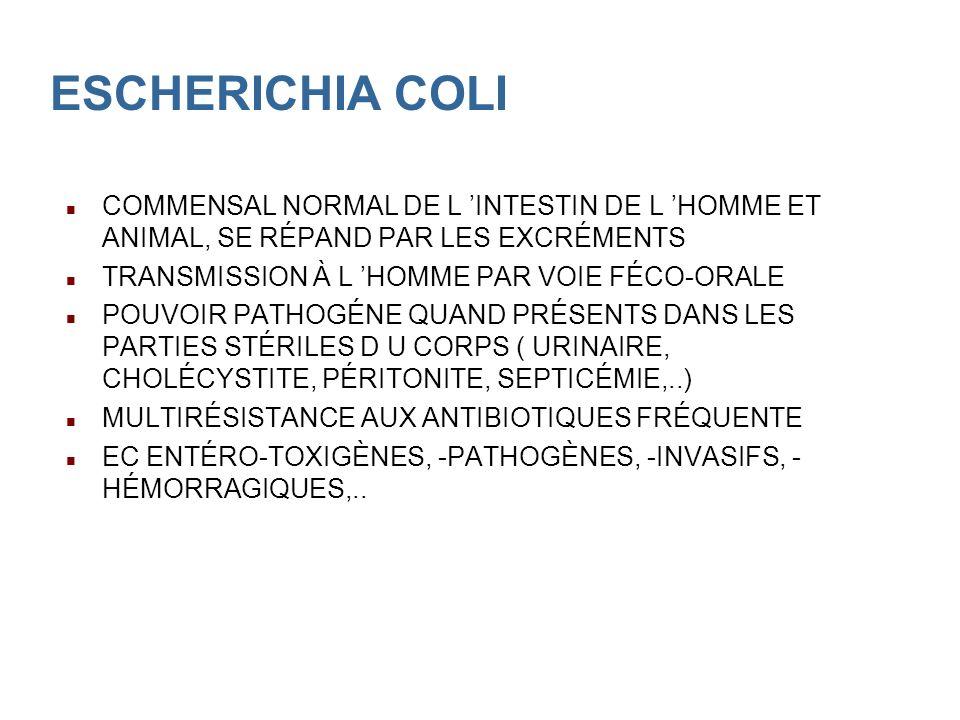 ESCHERICHIA COLI COMMENSAL NORMAL DE L INTESTIN DE L HOMME ET ANIMAL, SE RÉPAND PAR LES EXCRÉMENTS TRANSMISSION À L HOMME PAR VOIE FÉCO-ORALE POUVOIR PATHOGÉNE QUAND PRÉSENTS DANS LES PARTIES STÉRILES D U CORPS ( URINAIRE, CHOLÉCYSTITE, PÉRITONITE, SEPTICÉMIE,..) MULTIRÉSISTANCE AUX ANTIBIOTIQUES FRÉQUENTE EC ENTÉRO-TOXIGÈNES, -PATHOGÈNES, -INVASIFS, - HÉMORRAGIQUES,..