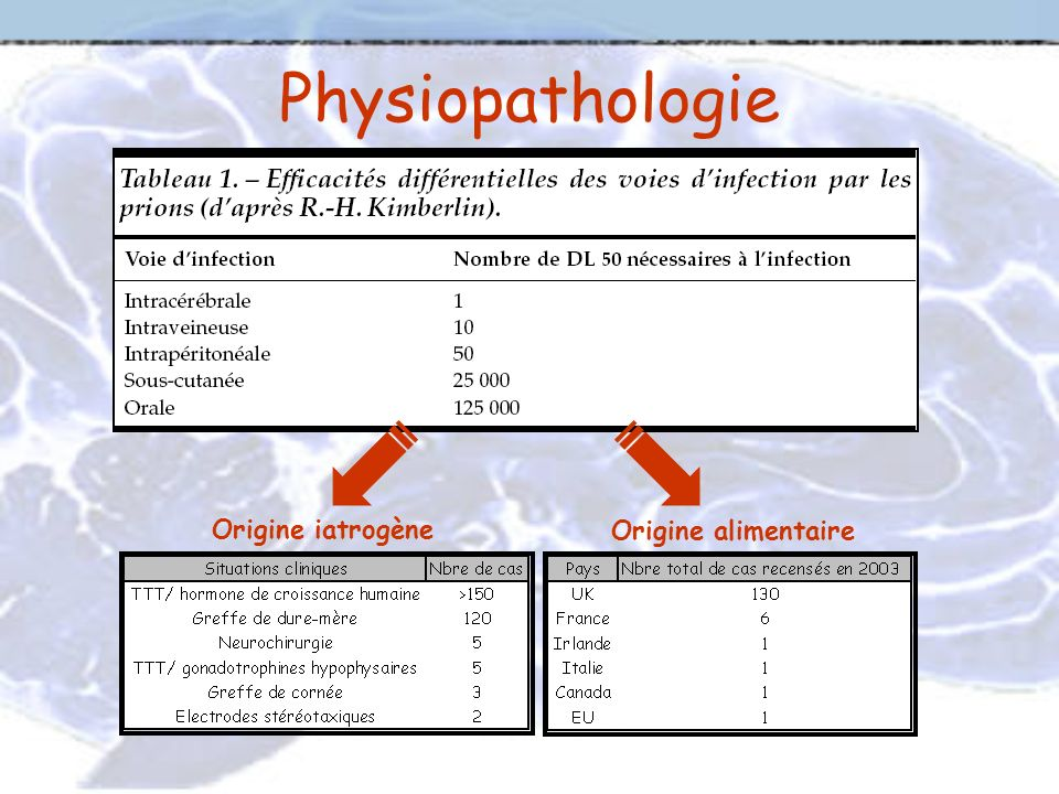 Physiopathologie Origine iatrogène Origine alimentaire