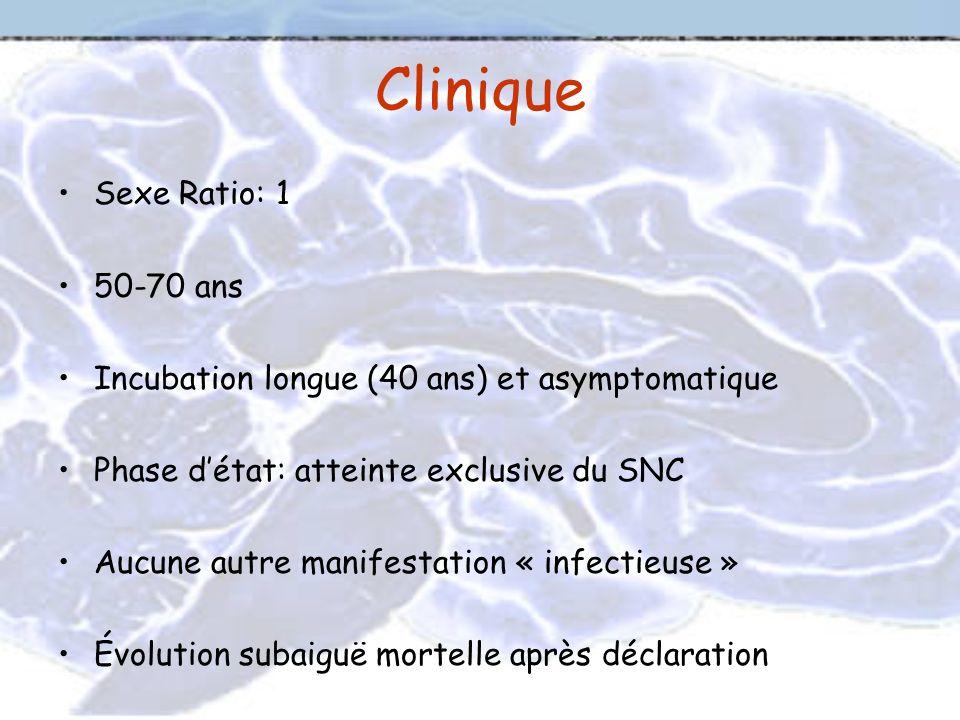 Clinique Sexe Ratio: 1 50-70 ans Incubation longue (40 ans) et asymptomatique Phase détat: atteinte exclusive du SNC Aucune autre manifestation « infe