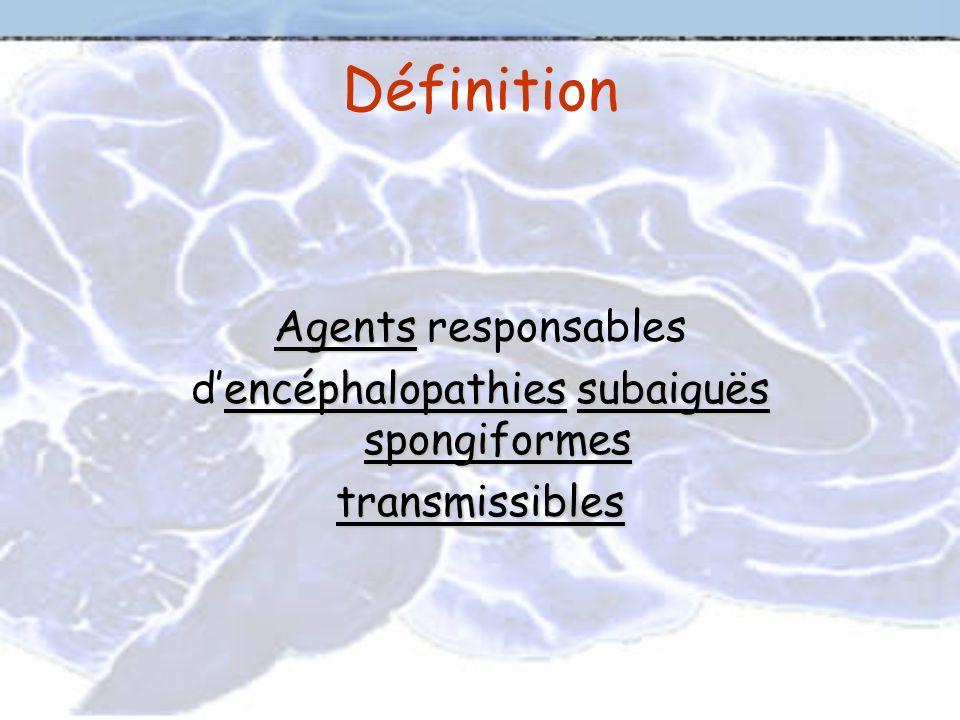 Définition Agents Agents responsables encéphalopathiessubaiguës spongiformes dencéphalopathies subaiguës spongiformestransmissibles