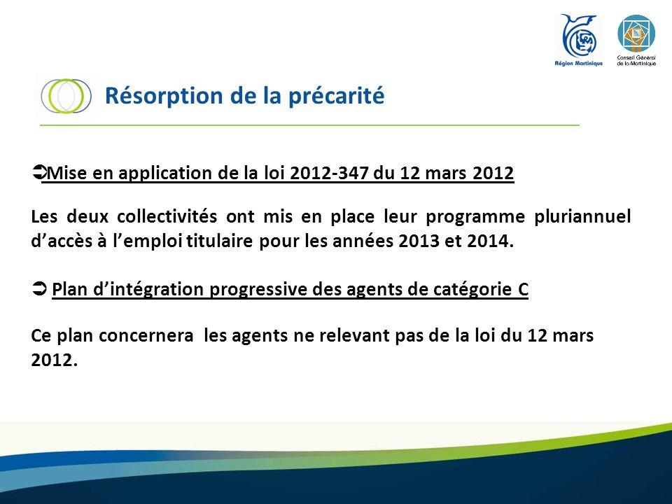 Mise en application de la loi 2012-347 du 12 mars 2012 Les deux collectivités ont mis en place leur programme pluriannuel daccès à lemploi titulaire p