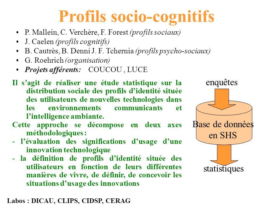 Profils socio-cognitifs P. Mallein, C. Verchère, F.