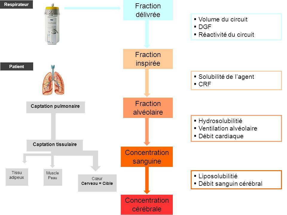 Fraction inspirée Fraction alvéolaire Concentration sanguine Concentration cérébrale Volume du circuit DGF Réactivité du circuit Fraction délivrée Solubilité de lagent CRF Hydrosolubilitié Ventilation alvéolaire Débit cardiaque Liposolubilitié Débit sanguin cérébral Cœur Cerveau = Cible Tissu adipeux Muscle Peau Captation pulmonaire Captation tissulaire Patient Respirateur