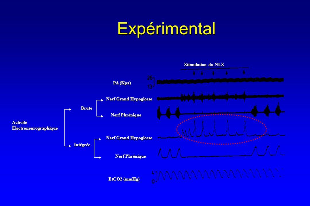 Expérimental ActivitéÉlectroneurographique Nerf Phrénique Brute Intégrée Nerf Grand Hypoglosse Nerf Phrénique Stimulation du NLS PA (Kpa) EtCO2 (mmHg)