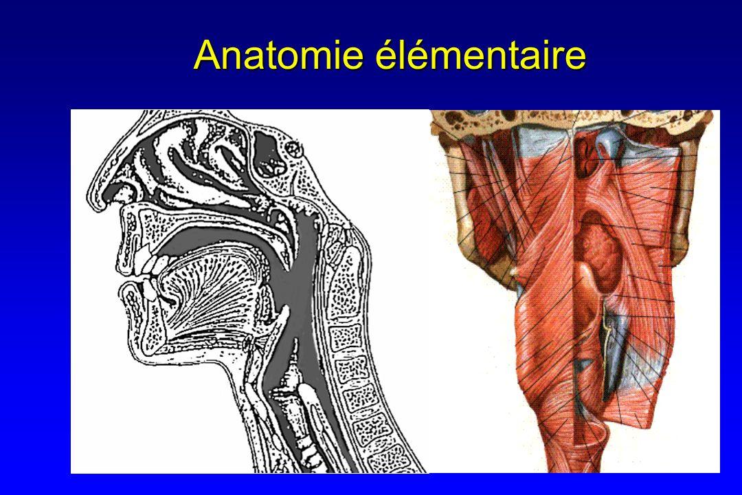En pratique Ballonnet est dégonflé si : Ballonnet est dégonflé si : ConscientConscient Réflexe de toux est présentRéflexe de toux est présent Ascension laryngée acceptableAscension laryngée acceptable Occlusion laryngée correcte en endoscopie rétrogradeOcclusion laryngée correcte en endoscopie rétrograde Gel coloréGel coloré Décannulation si Décannulation si Latence OMF normaleLatence OMF normale Ascension laryngée normaleAscension laryngée normale Protection liquide et solide en endoscopie rétrogradeProtection liquide et solide en endoscopie rétrograde