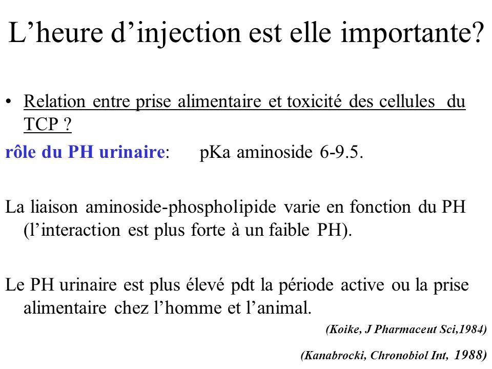 Lheure dinjection est elle importante? Relation entre prise alimentaire et toxicité des cellules du TCP ? rôle du PH urinaire: pKa aminoside 6-9.5. La