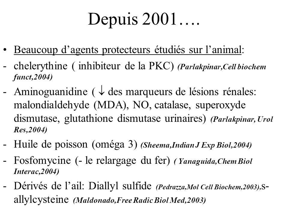 Depuis 2001…. Beaucoup dagents protecteurs étudiés sur lanimal: -chelerythine ( inhibiteur de la PKC) (Parlakpinar,Cell biochem funct,2004) -Aminoguan