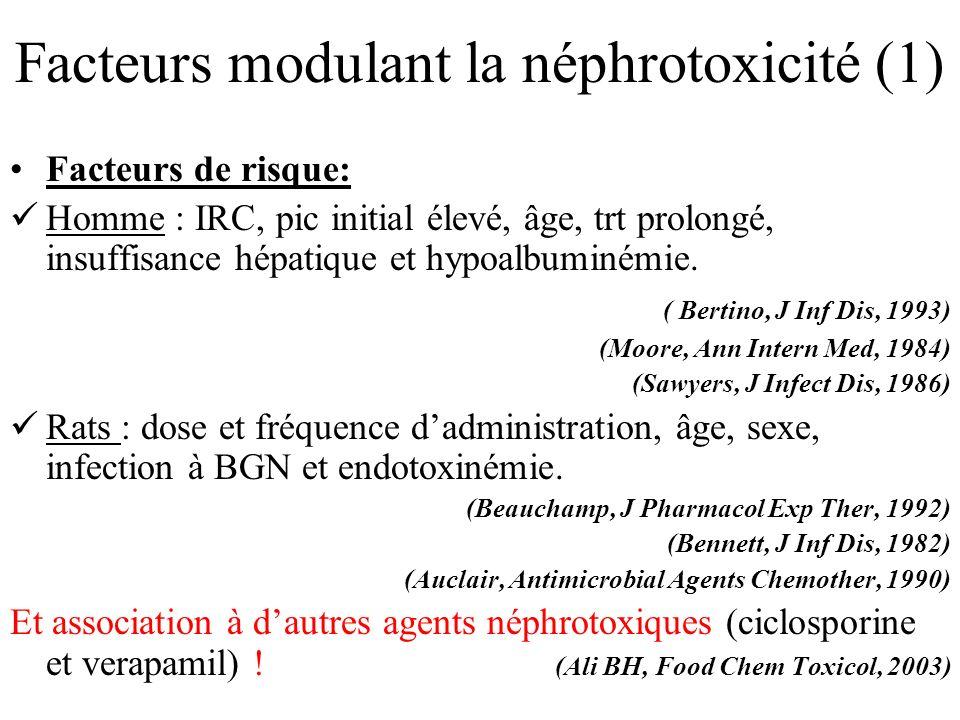 Facteurs modulant la néphrotoxicité (1) Facteurs de risque: Homme : IRC, pic initial élevé, âge, trt prolongé, insuffisance hépatique et hypoalbuminém