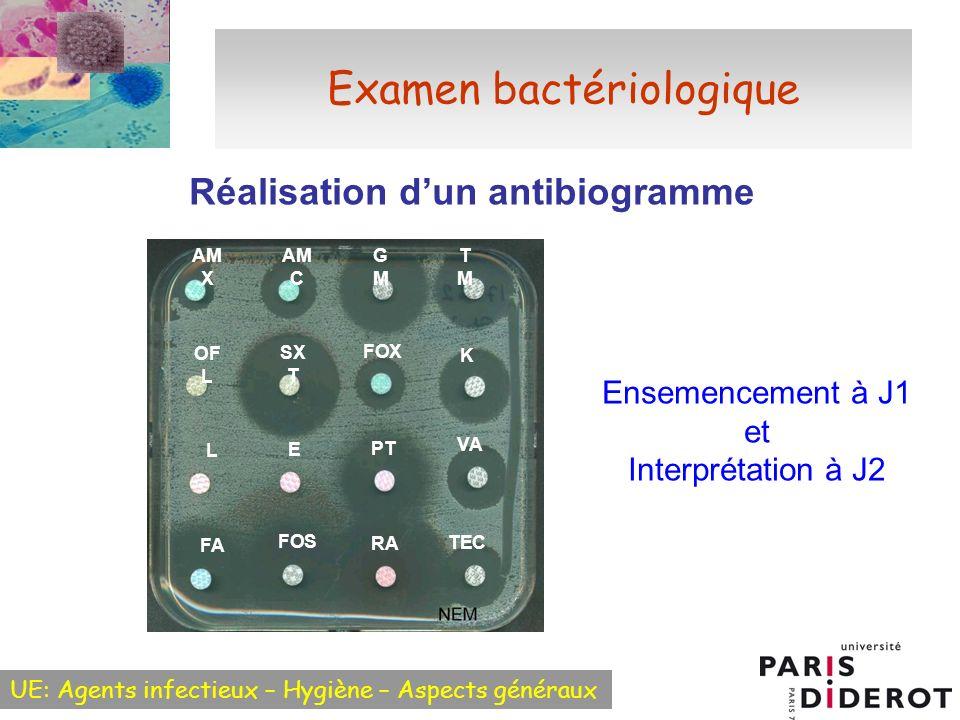 UE: Agents infectieux – Hygiène – Aspects généraux Examen bactériologique Réalisation dun antibiogramme FA FOS RA TEC OF L SX T FOX K L E PT VA AM X AM C GMGM TMTM Ensemencement à J1 et Interprétation à J2
