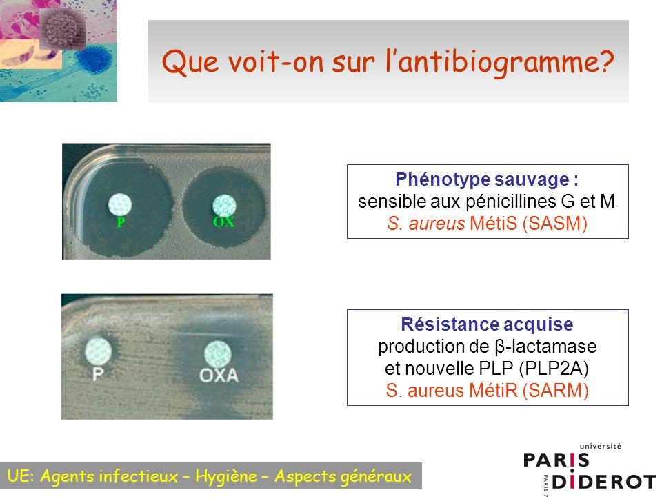 UE: Agents infectieux – Hygiène – Aspects généraux Que voit-on sur lantibiogramme? Phénotype sauvage : sensible aux pénicillines G et M S. aureus Méti