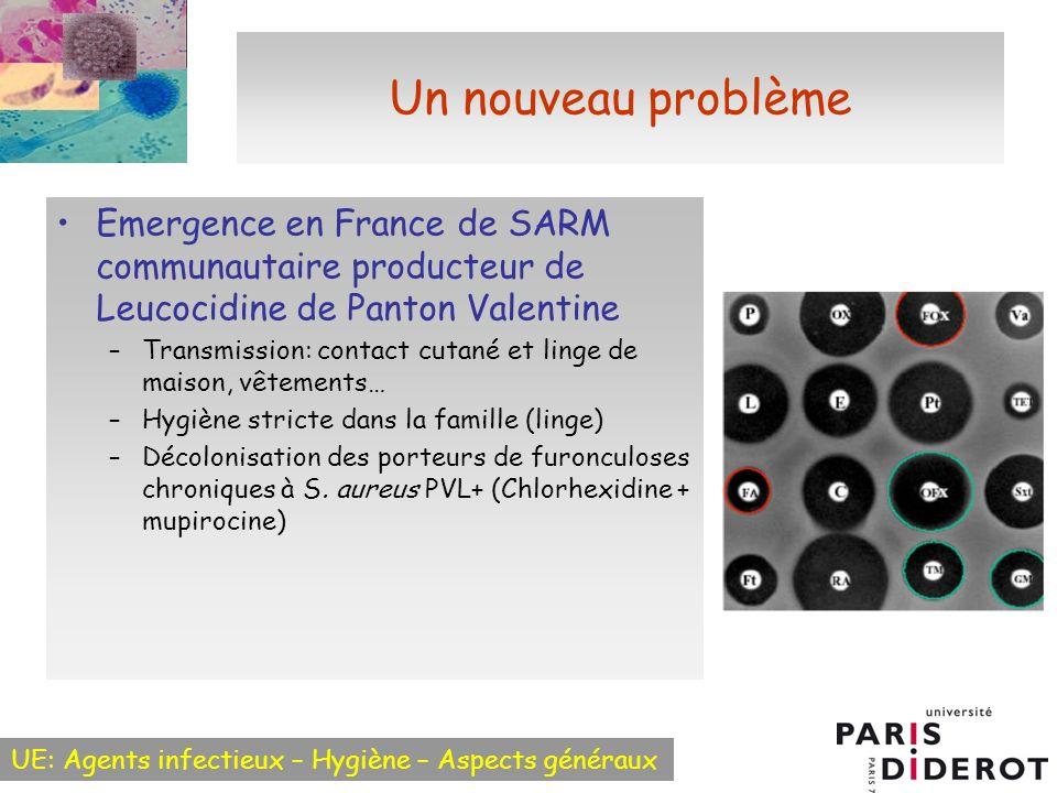 UE: Agents infectieux – Hygiène – Aspects généraux Un nouveau problème Emergence en France de SARM communautaire producteur de Leucocidine de Panton V