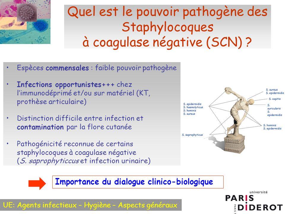 UE: Agents infectieux – Hygiène – Aspects généraux Quel est le pouvoir pathogène des Staphylocoques à coagulase négative (SCN) ? Espèces commensales :