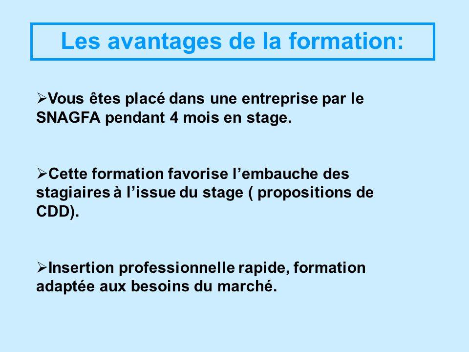 Les avantages de la formation: Vous êtes placé dans une entreprise par le SNAGFA pendant 4 mois en stage. Cette formation favorise lembauche des stagi