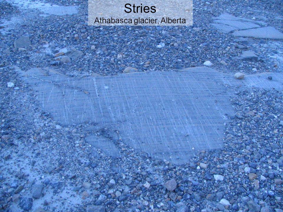 Stries Athabasca glacier, Alberta
