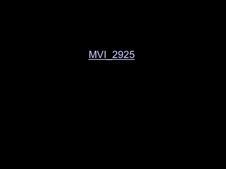 MVI_2925