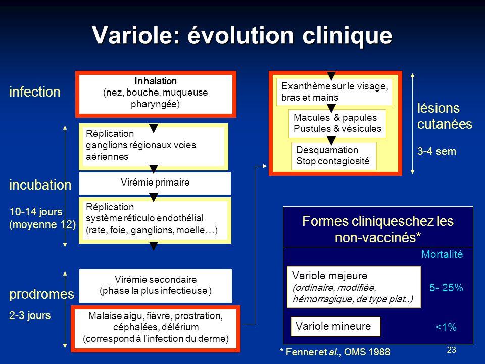 23 Variole: évolution clinique Inhalation (nez, bouche, muqueuse pharyngée) Exanthème sur le visage, bras et mains Macules & papules Pustules & vésicu