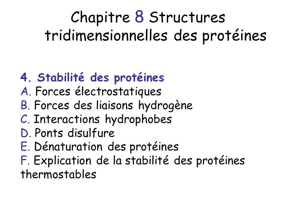 Chapitre 8 Structures tridimensionnelles des protéines 4. Stabilité des protéines A. Forces électrostatiques B. Forces des liaisons hydrogène C. Inter