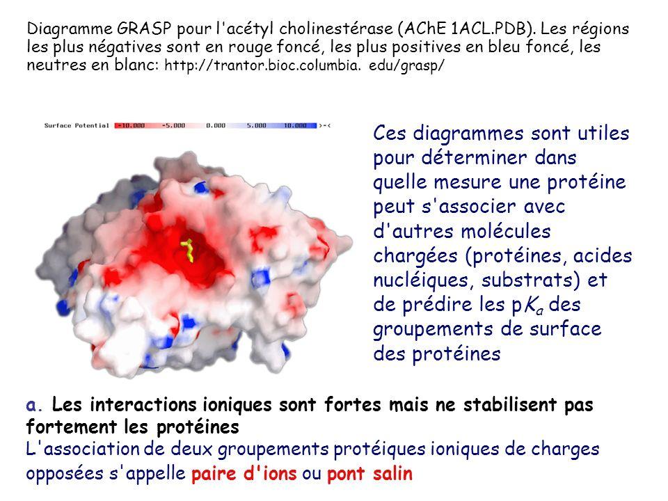 Diagramme GRASP pour l acétyl cholinestérase (AChE 1ACL.PDB).