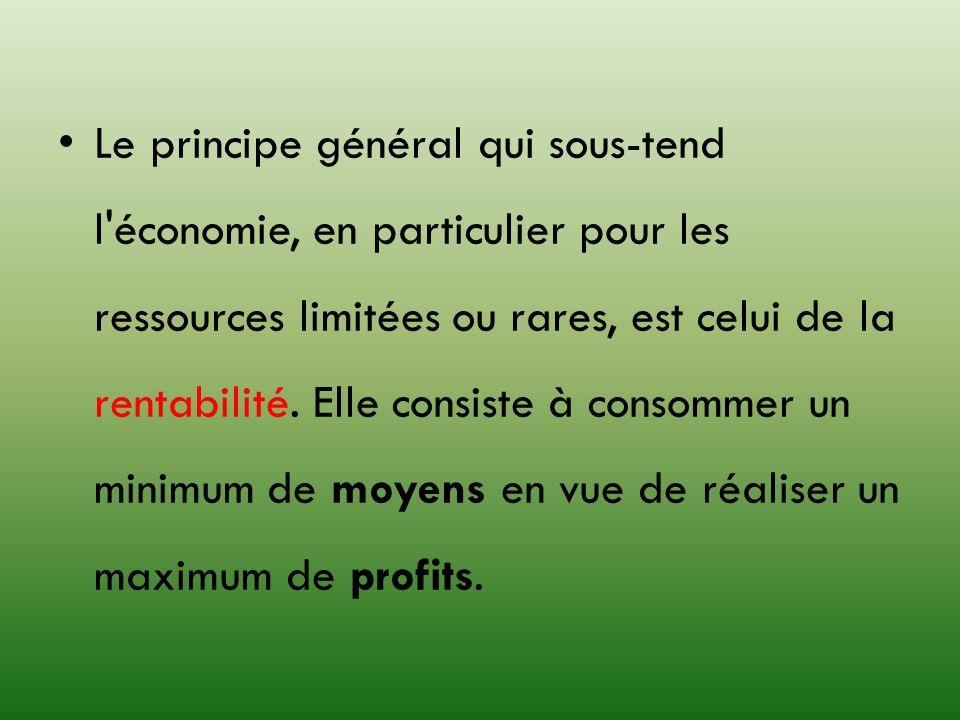Le principe général qui sous-tend l'économie, en particulier pour les ressources limitées ou rares, est celui de la rentabilité. Elle consiste à conso