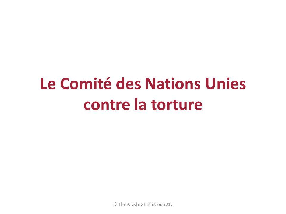 Le Comité des Nations Unies contre la torture © The Article 5 Initiative, 2013