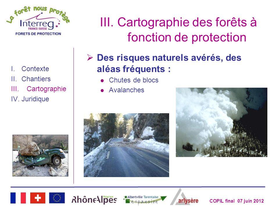 COPIL final 07 juin 2012 III.Cartographie des forêts à fonction de protection I.Contexte II.Chantiers III.Cartographie IV.Juridique Des risques nature