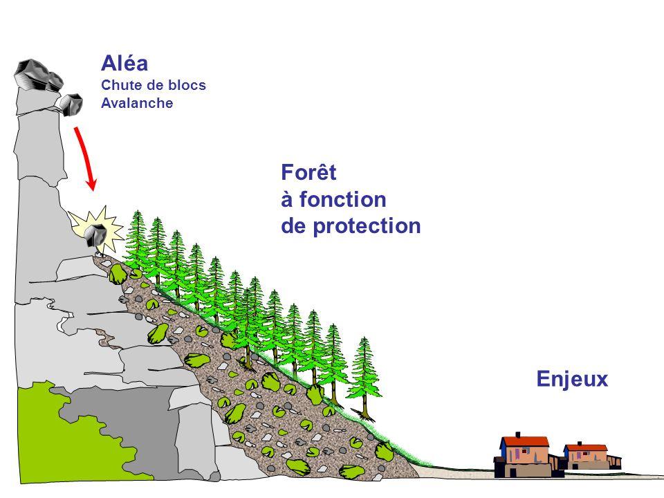 COPIL final 07 juin 2012 Aléa Chute de blocs Avalanche Forêt à fonction de protection Enjeux
