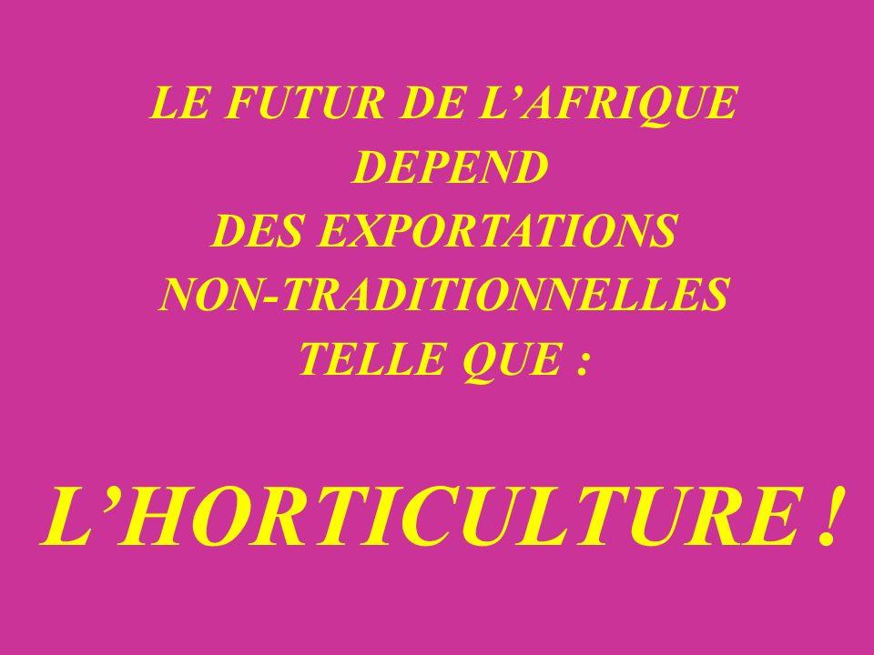 LE FUTUR DE LAFRIQUE DEPEND DES EXPORTATIONS NON-TRADITIONNELLES TELLE QUE : LHORTICULTURE !