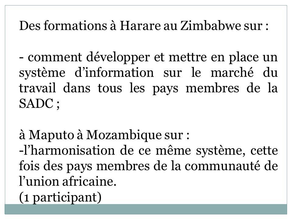 Des formations à Harare au Zimbabwe sur : - comment développer et mettre en place un système dinformation sur le marché du travail dans tous les pays membres de la SADC ; à Maputo à Mozambique sur : -lharmonisation de ce même système, cette fois des pays membres de la communauté de lunion africaine.