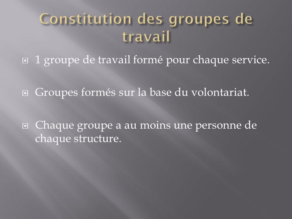1 groupe de travail formé pour chaque service. Groupes formés sur la base du volontariat. Chaque groupe a au moins une personne de chaque structure.