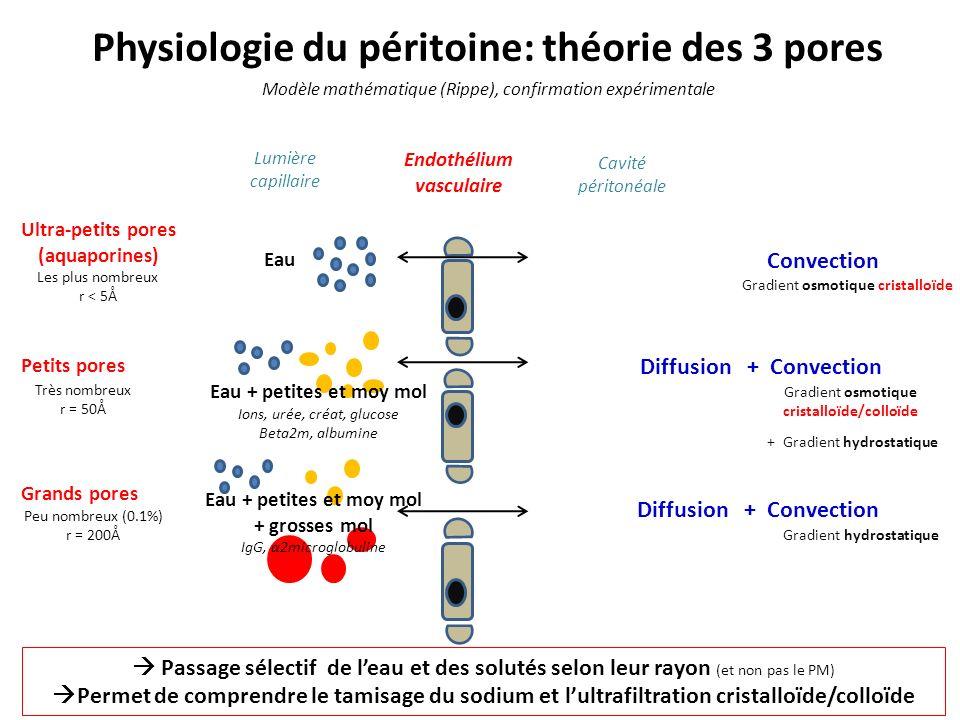 Composition des solutions de DP Agent osmotique Agent tampon Electrolytes Agent cristalloïde (glucose/ acides aminés/ glycérol) Lactates 35 à 40mmol/L (pH 5 à 6) Agent colloïde (icodextrine) Lactates 15mmol/L + HCO 3 - 25mmol/L (pH=7,4) Na + 132 à 136 mmol/L Ca 2+ 1,25 à 1,75 mmol/L Mg 2+ 0,25 à 0,75 mmol/L + + HCO 3 - 34mmol/L (pH=7,4) Cl - ( électroneutralité)