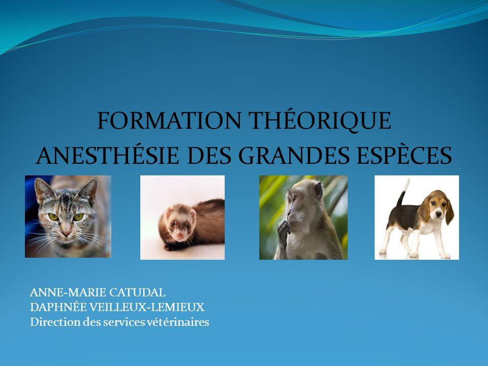 FORMATION THÉORIQUE ANESTHÉSIE DES GRANDES ESPÈCES ANNE-MARIE CATUDAL DAPHNÉE VEILLEUX-LEMIEUX Direction des services vétérinaires