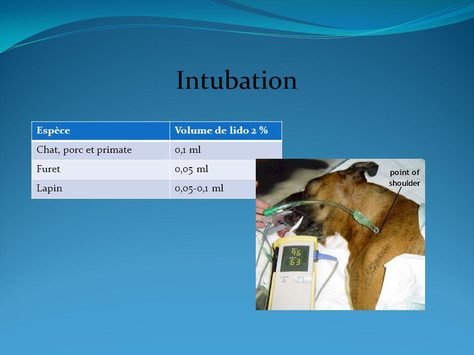 Intubation EspèceVolume de lido 2 % Chat, porc et primate0,1 ml Furet0,05 ml Lapin0,05-0,1 ml