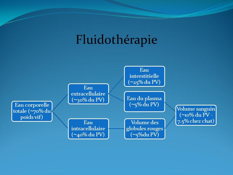Fluidothérapie Eau corporelle totale ( ~ 70% du poids vif) Eau extracellulaire ( ~ 30% du PV) Eau du plasma ( ~ 5% du PV) Eau interstitielle ( ~ 25% d