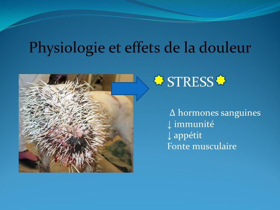 Physiologie et effets de la douleur STRESS hormones sanguines immunité appétit Fonte musculaire