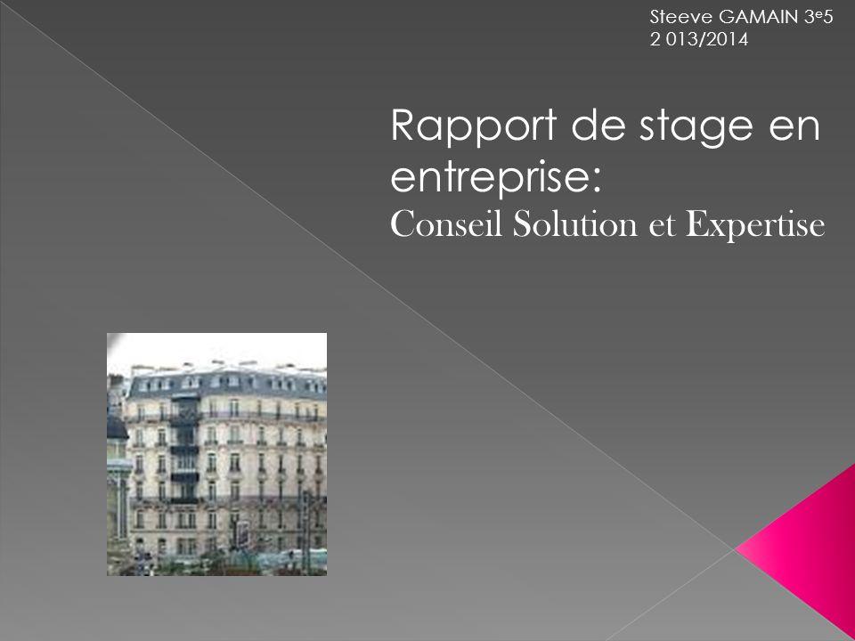 Steeve GAMAIN 3 e 5 2 013/2014 Rapport de stage en entreprise: Conseil Solution et Expertise