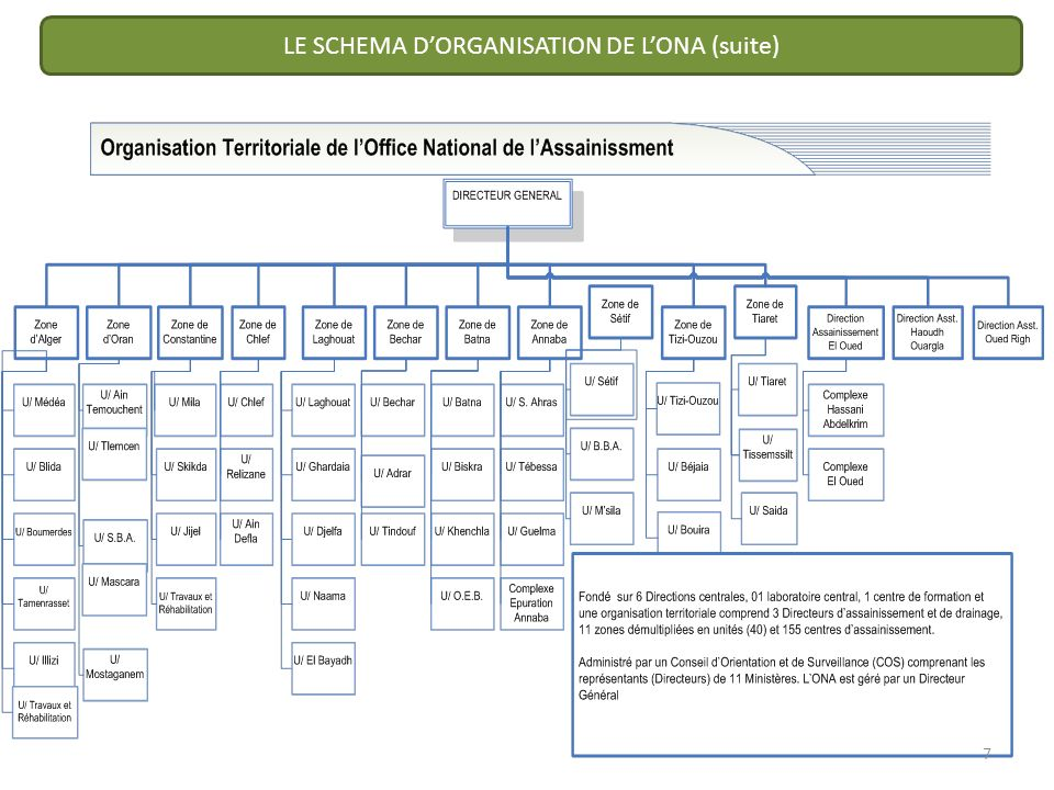 LE SCHEMA DORGANISATION DE LONA (suite) 7