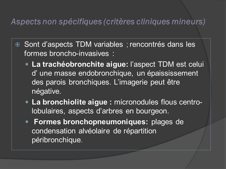 Aspects non spécifiques (critères cliniques mineurs) Sont daspects TDM variables ; rencontrés dans les formes broncho-invasives : La trachéobronchite