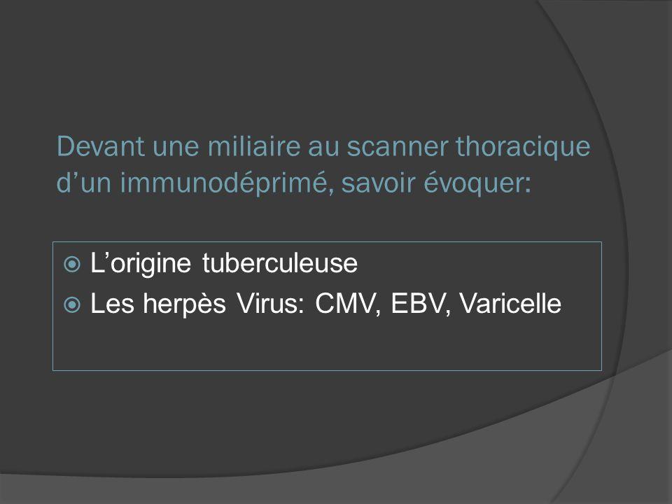 Devant une miliaire au scanner thoracique dun immunodéprimé, savoir évoquer: Lorigine tuberculeuse Les herpès Virus: CMV, EBV, Varicelle