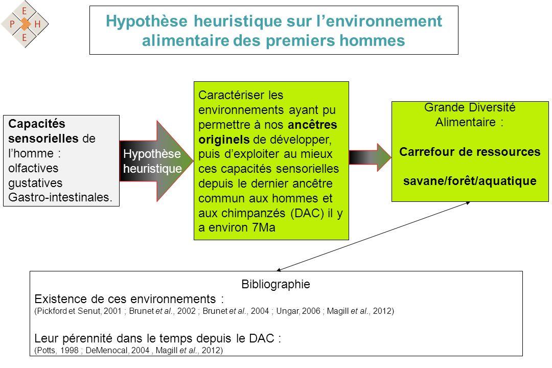 Hypothèse heuristique Capacités sensorielles de lhomme : olfactives gustatives Gastro-intestinales. Caractériser les environnements ayant pu permettre